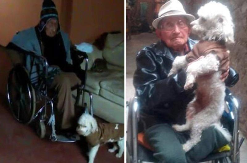 Abuelito pide ayuda para encontrar a su perrito que se perdió en Villa María del Triunfo