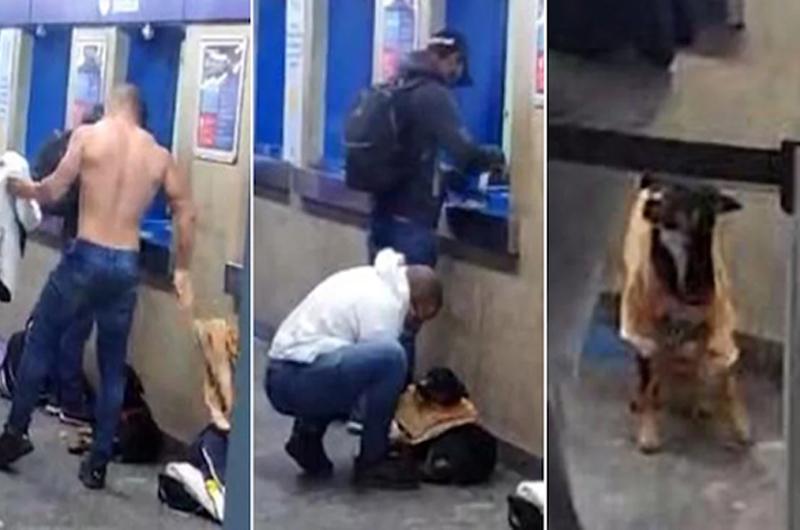 Hombre es grabado quitándose la camisa y vistiendo a un perro que tenia frío en el metro